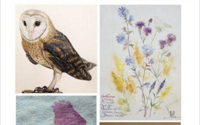 Fyra konstnärer och en forskare sammanstrålar i Kulturhuset